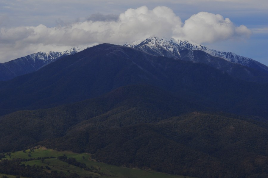 Mt Bogong from Tawonga Pass